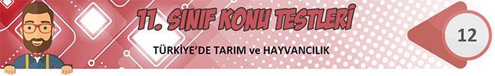 Türkiye'de Tarım ve Hayvancılık Konu Testi