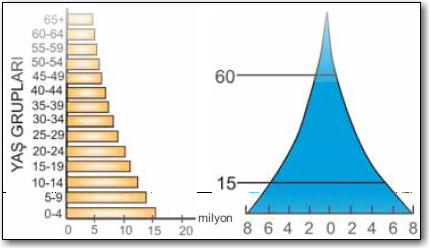 Durağan-nüfus-piramidi