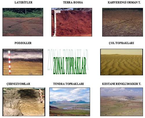 Türkiye'de Görülen Toprak Tipleri ve Özellikleri