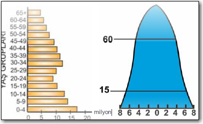 Çan-Nüfus-piramidi