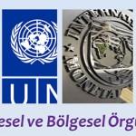 Uluslararası Örgütler Testi Çöz